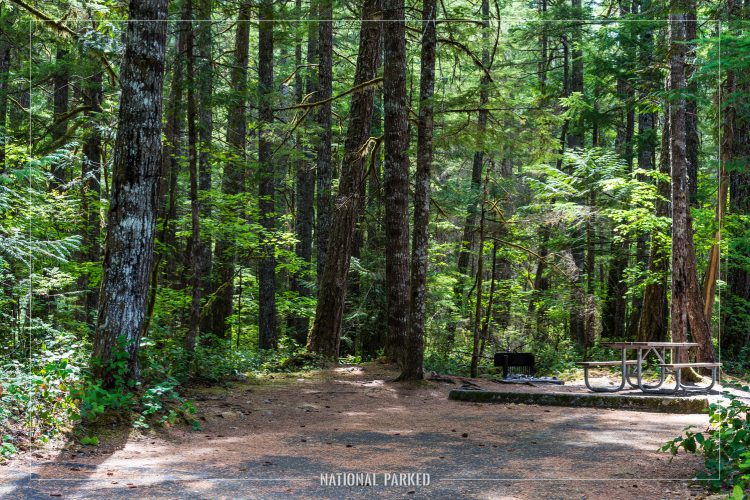 Newhalem Creek Campground in North Cascades National Park Complex