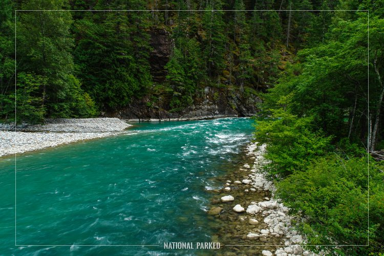 Skagit River in Ross Lake National Recreation Area in Washington