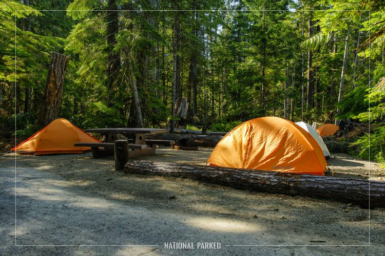 Heart o' the Hills Campground in Olympic National Park in Washington