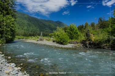 Hoh River in Olympic National Park in Washington