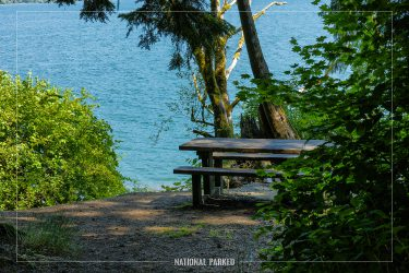 July Creek Picnic Area in Olympic National Park in Washington