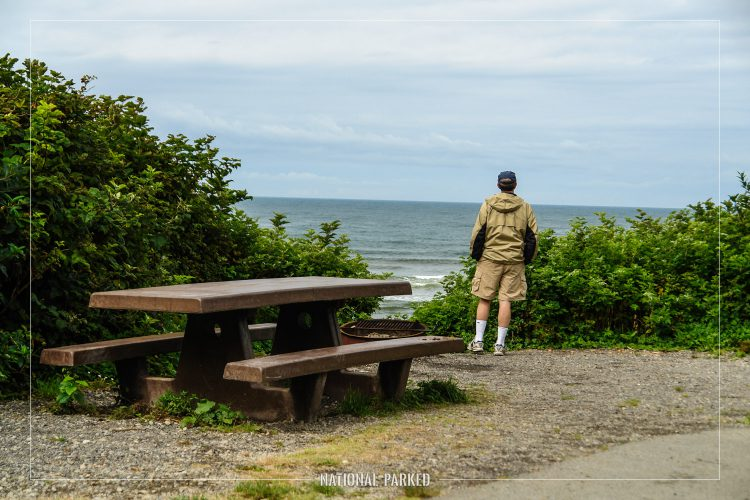 Kalaloch Campground in Olympic National Park in Washington