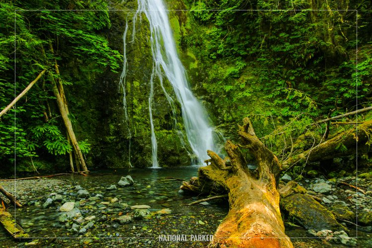 Madison Creek Falls in Olympic National Park in Washington