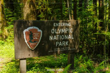 Quinault Entrance Sign in Olympic National Park in Washington