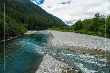 Quinault River in Olympic National Park in Washington