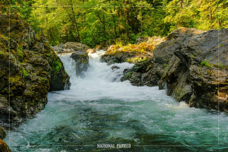 Salmon Cascades in Olympic National Park in Washington