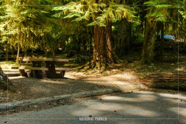 Sol Duc Campground in Olympic National Park in Washington