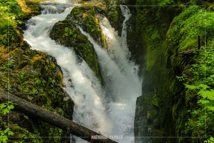 Sol Duc Falls in Olympic National Park in Washington