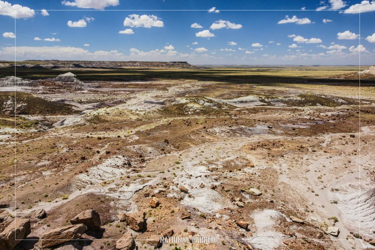 Jasper Forest in Petrified Forest National Park in Arizona
