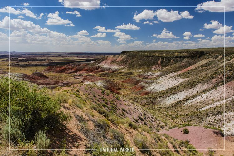 Nizhoni Point in Petrified Forest National Park in Arizona