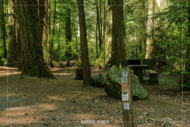 Jedidiah Smith Campground in Redwood National Park in California