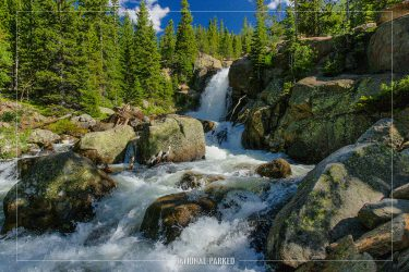 Alberta Falls in Rocky Mountain National Park in Colorado