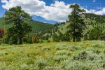 Hollowell Park in Rocky Mountain National Park in Colorado