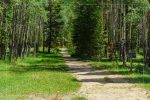 Timber Lake Trail in Rocky Mountain National Park in Colorado