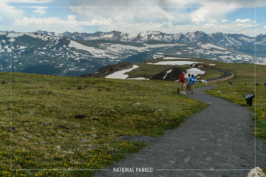 Tundra Communities Trail in Rocky Mountain National Park