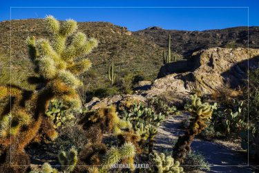 Javelina Rocks Overlook in Saguaro National Park in Arizona