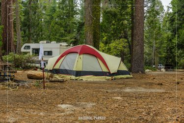 Azalea Campground in Kings Canyon National Park in California