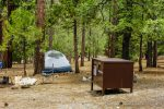 Canyon View Campground in Kings Canyon National Park in California