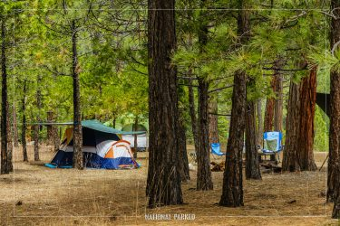 Moraine Campground in Kings Canyon National Park in California