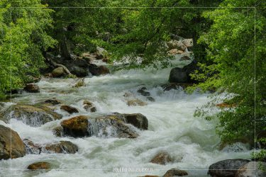 Roaring River in Kings Canyon National Park in California