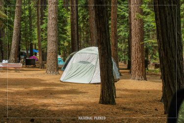 Sentinel Campground in Kings Canyon National Park in California
