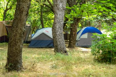 Buckeye Flat Campground in Sequoia National Park in California