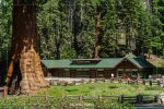 Giant Forest Museum in Sequoia National Park in California