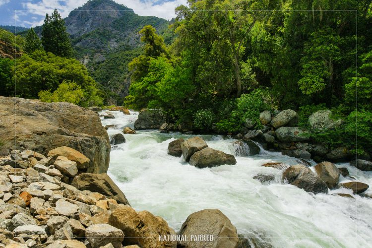 Kings River in Sequoia National Forest in California