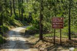 Redwood Canyon Road in Sequoia National Forest in California