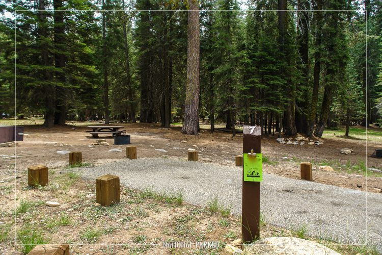 Stony Creek Campground in Sequoia National Forest in California