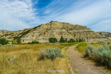 Caprock Coulee Nature Trail in Theodore Roosevelt National Park in North Dakota
