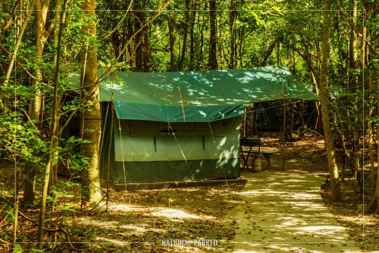 Cinnamon Bay Campground in Virgin Islands National Park on the island of St. John