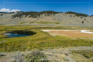 Blacktail Lakes in Yellowstone National Park in Wyoming