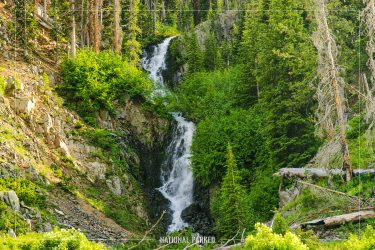 Crecelius Cascade in Yellowstone National Park in Wyoming
