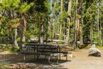 DeLacy Creek Picnic Area in Yellowstone National Park in Wyoming