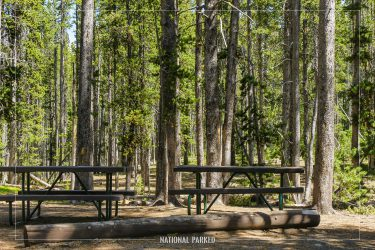 Divide Picnic Area in Yellowstone National Park in Wyoming