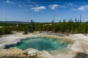 Emerald Spring in Yellowstone National Park in Wyoming