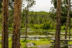 Firehole River Picnic Area in Yellowstone National Park in Wyoming