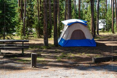 Grant Village Campground in Yellowstone National Park in Wyoming