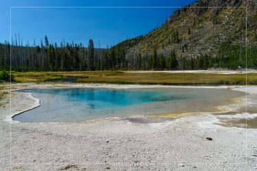 Green Spring in Yellowstone National Park in Wyoming