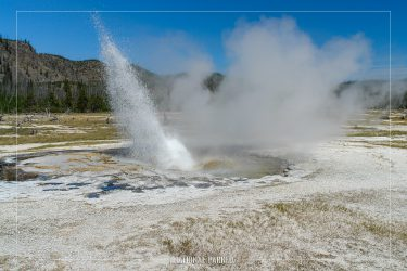 Jewel Geyser in Yellowstone National Park in Wyoming