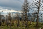 Lake Butte Overlook in Yellowstone National Park in Wyoming