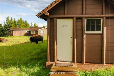 Lake Lodge Cabins in Yellowstone National Park in Wyoming