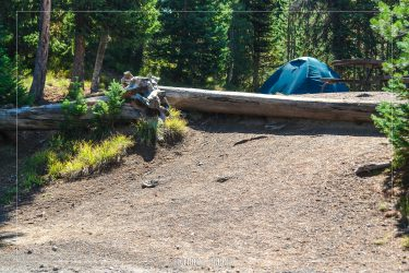 Lewis Lake Campground in Yellowstone National Park in Wyoming