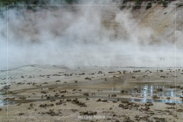 Mud Cauldron in Yellowstone National Park in Wyoming