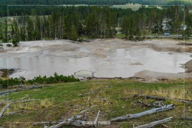 Mud Geyser in Yellowstone National Park in Wyoming