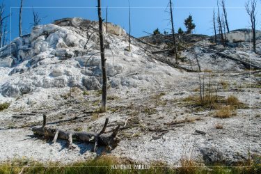 New Highland Terrace in Yellowstone National Park in Wyoming