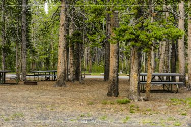 Norris Picnic Area in Yellowstone National Park in Wyoming