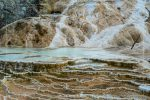 Palette Springs in Yellowstone National Park in Wyoming