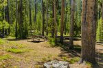 Spring Creek Picnic Area in Yellowstone National Park in Wyoming